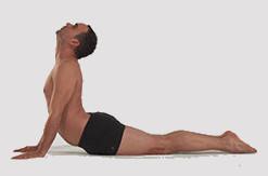 yoga fiche posturale détaillée de Bhujangasana le serpend
