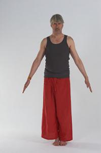 tadasana la montagne cours de yoga paris bastille