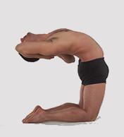 gomukhasana cours de yoga paris bastille gare de lyon individuels massages