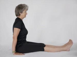 dandasana le baton  yoga amrita