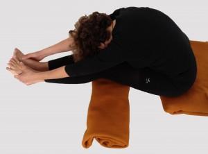 paschimottanasana  yoga amrita